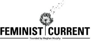 FEM_CURRENT_logo